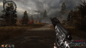 Сталкер Call of Pripyat - STCoPWP 3.0 + Absolute Nature 4