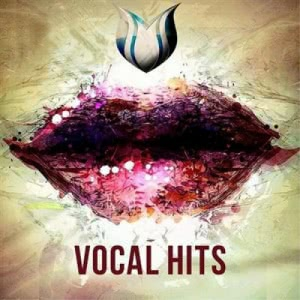 VA - Vocal Hits Vol.5
