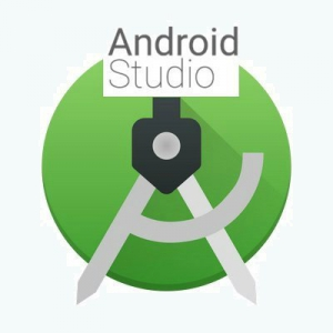 Android Studio 4.1 Build #AI-201.8743.12.41.6858069 [En]