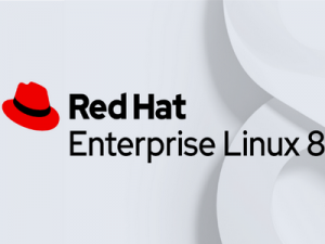 Red Hat Enterprise Linux 8.4 [amd64, aarch64] 2xDVD